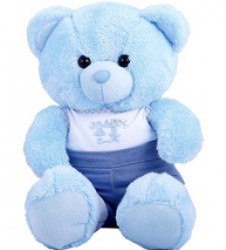 /en/products/catalog/category/3-baby-boy-teddy-bears.html