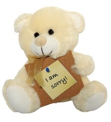 /en/products/catalog/category/12-i-am-sorry-teddy-bear.html